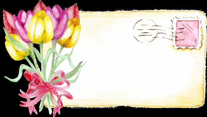 tulip-2664547_1280